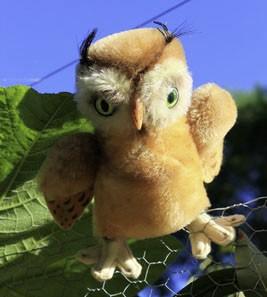 Steiff Wittie Owl 14cm $95