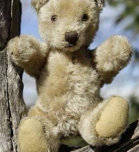 Steiff Original Teddy 18cm $150