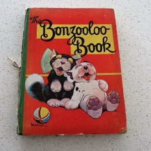 Book – Bonzooloo Book