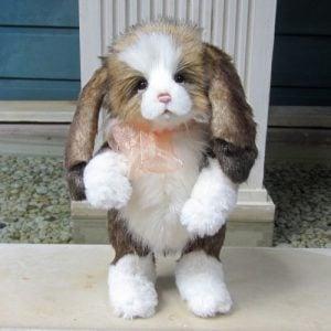 Annabelle Rabbit