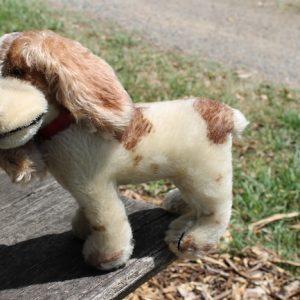 Steiff Cockie Cocker Spaniel Dog – 18cm vintage