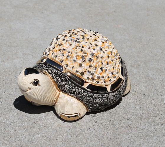 Rinconada - Turtle White B03W