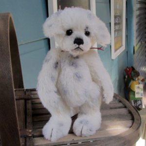 Polka Dot the dog