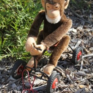 Steiff 'Record Peter' Chimpanzee Monkey on wheels.  25cm – vintage.