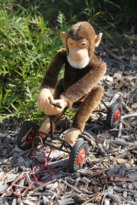 Steiff 'Record Peter' Chimpanzee Monkey on wheels.  25cm - vintage.