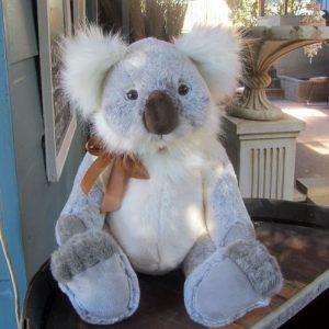 Taronga Koala