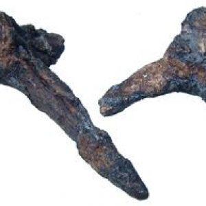 Roman Iron Caltrops