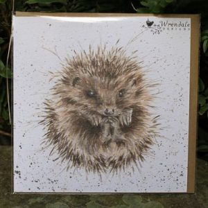 Awakening Hedgehog – Greeting Card