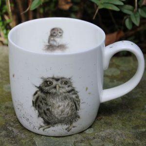 What a Hoot – Mug