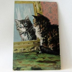 Postcard – Cat Looking in the Mirror
