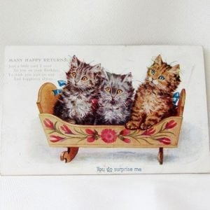 Postcard – Kitten Trio