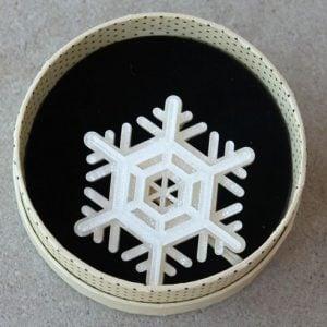 Erstwilder Brooch – Winter Wonderland