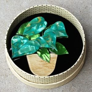 Erstwilder Brooch – Show Me The Money Plant