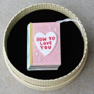 Erstwilder Brooch – How To Love You (Book)