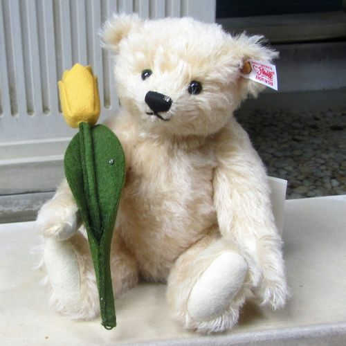 Morpeth Teddy Bears Steiff Tim with Tulip