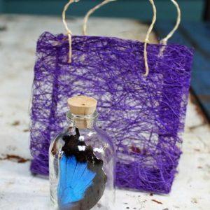 Ulysses Butterfly Wing in Bottle