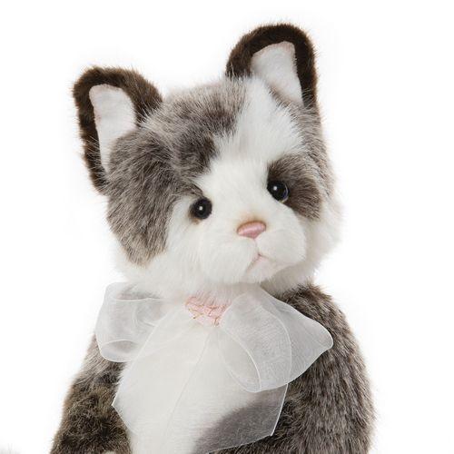 Morpeth Bears Charlie bears plush 2020 Rodders cat