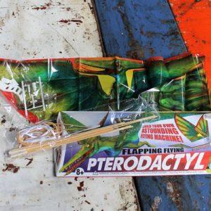 Pterodactyl Flying Machine.