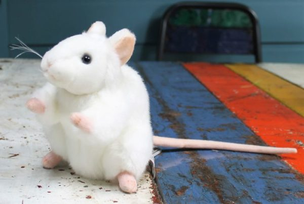 morpeth gift gallery hunter valley hansa plush white mouse cuddly soft toy animal farm wild jungle insect cat dog african