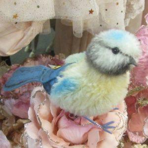 Piccy Bird
