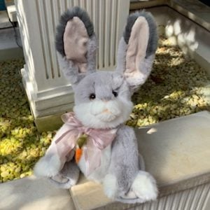 Cabbage Rose, rabbit