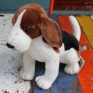 Beagle Dog by Hansa