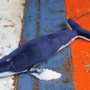 Humpback Whale by Hansa