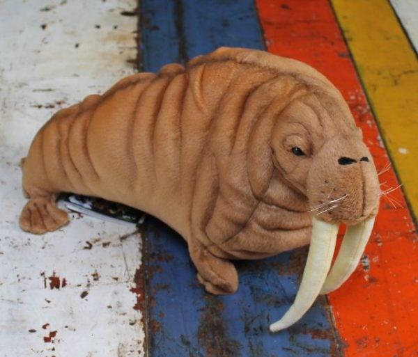 morpeth gift gallery hunter valley hansa plush creations bird animal insect walrus