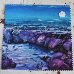 Cleaning Cloth – Ocean Reef