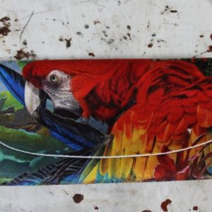 Glasses Case – Macaw Parrot
