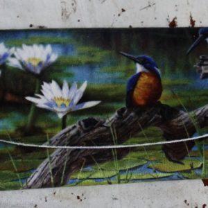 Glasses Case – Kingfishers