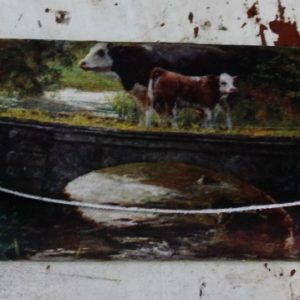 Glasses Case – Country Cows