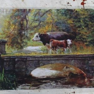 Computer Mouse Mat – Country Cows