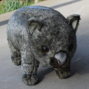 Hansa – Wombat