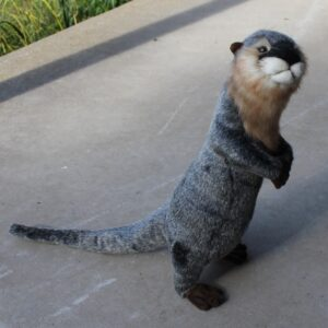 Hansa – River Otter