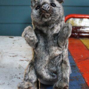 Hansa Puppet – Wombat