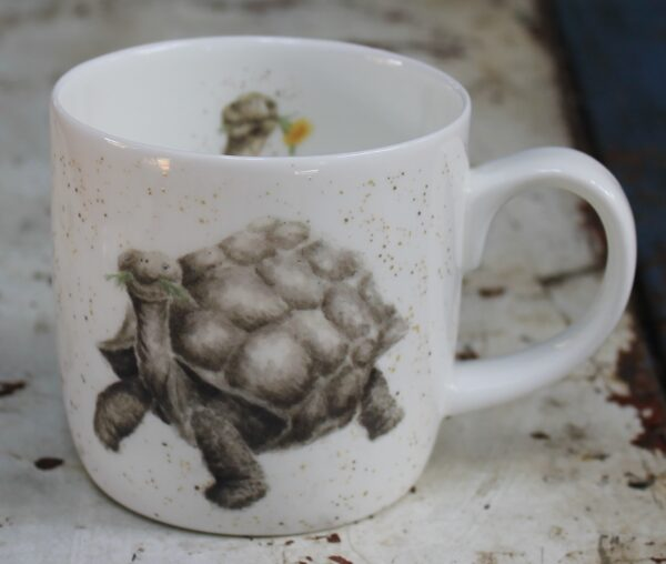 morpeth gift gallery wrendale royal worcester mug aged to perfection tortoise turle galapagos