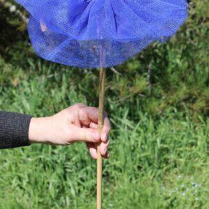Kewpie Doll – Royal Blue (looks purple, but she's blue)