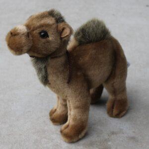Hansa – Camel