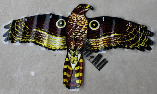 morpeth gift gallery hunter valley hawk bird scarer tisara australia wonder sheet and clip set replacement only for brown plastic body